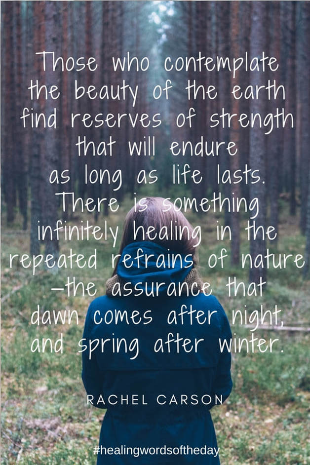 Those who contemplate the beauty of the earth...